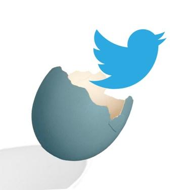 Emerging Twitter