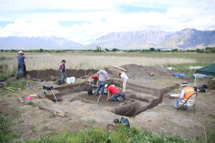 Field Dig.JPG