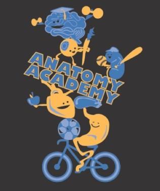Anatomy Academy