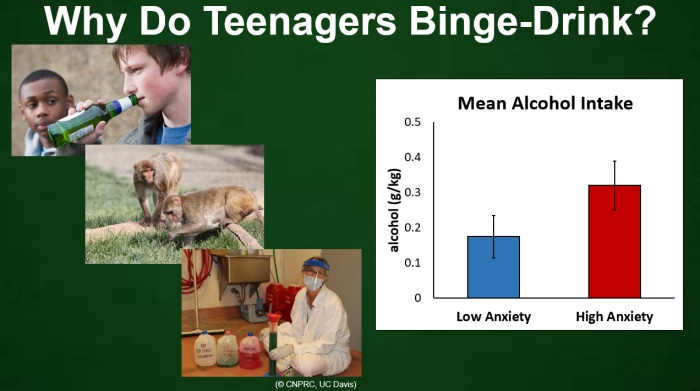 why do teenagers binge drink